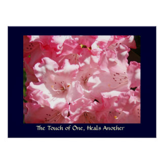 Touch of One, Heals Another art print Pink Rhodies