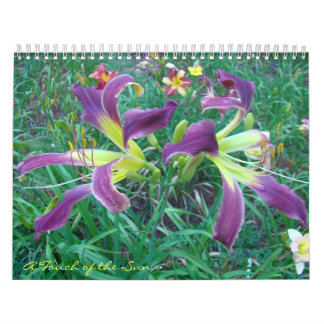 Touch of the Sun Daylilies II Calendar