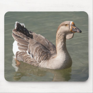 Toulouse Goose Mouse Pad