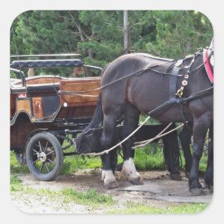 Touristic horse drawn calash square sticker