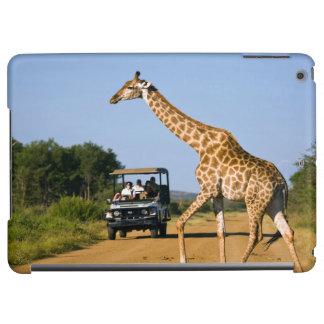 Tourists Watching Giraffe