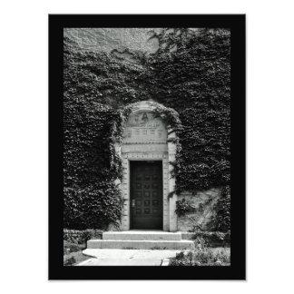 Tower Foliage Photo Print