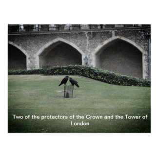 Tower of London Ravens Postcard
