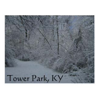 Tower Park, KY Postcard