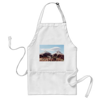 Towers of the Virgin at Zion National Park Apron