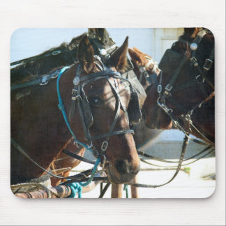 Town Hall Meeting Amish Buggy Horses Mouse Pad