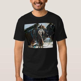 Town Hall Meeting Amish Buggy Horses T Shirts
