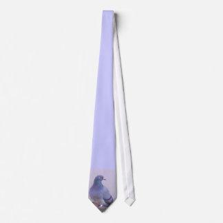 Town Pigeon Tie