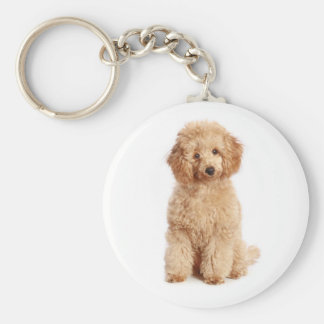Toy Apricot Poodle Puppy Love Dog Key Chain