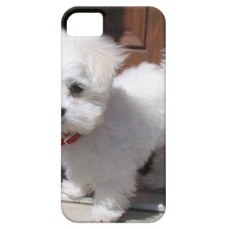 Toy Dogs Barely There iPhone 5 Case