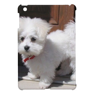 Toy Dogs iPad Mini Case