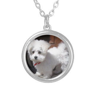 Toy Dogs Silver Plated Necklace