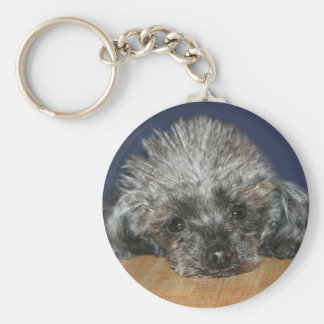 Toy silver poodle basic round button key ring