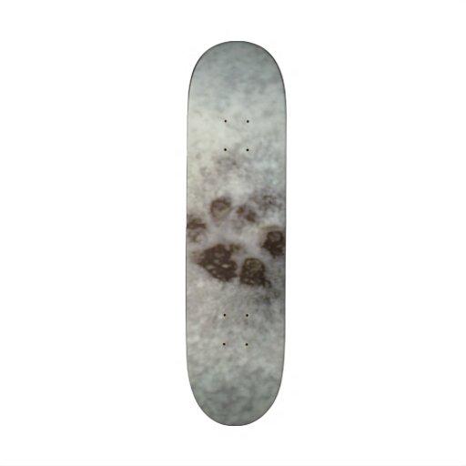 track in the snow skateboard decks