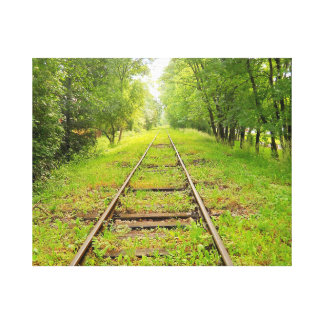 """Tracks"" Canvas Canvas Print"