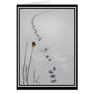 Tracks in the Snow Seasons Greetings Card