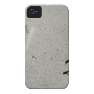 Tracks of a big dog on the sand iPhone 4 case