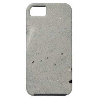 Tracks of a big dog on the sand iPhone 5 covers