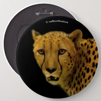 Trading Glances with a Magnificent Cheetah 6 Cm Round Badge