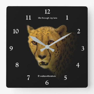 Trading Glances with a Magnificent Cheetah Square Wall Clock