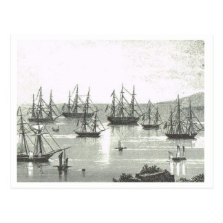 Trading vessels at anchor in Singapore1800s Postcard