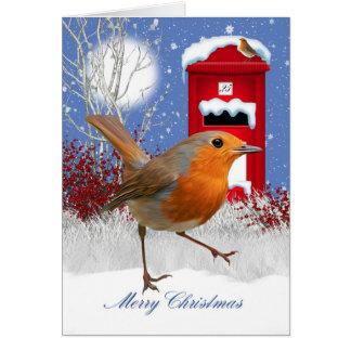 Traditional Robin And Mail Box Christmas Card