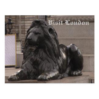 Trafalgar Square Lion Postcard