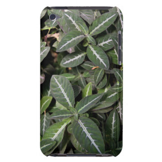 Trailing Velvet Plant Case-Mate iPod Touch iPod Touch Case-Mate Case
