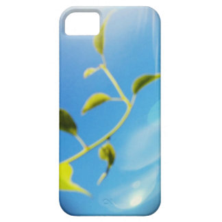 Trailing Vine Themed iPhone 5/5S, Barely There iPhone 5 Covers