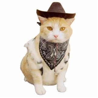 Trailrider Cowboy Kitty Photo Sculptures
