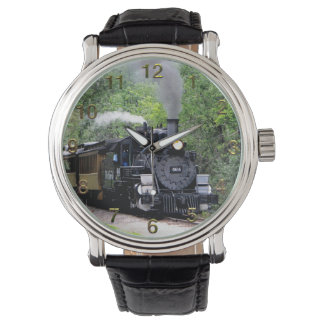 Train 29 Watch & Numeral Options