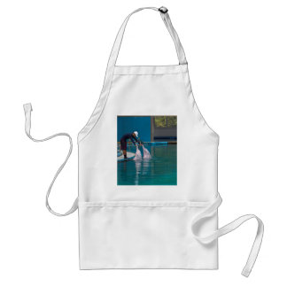 Trainer patting the dolphin during the show aprons