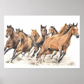 Trakehner Horses Poster