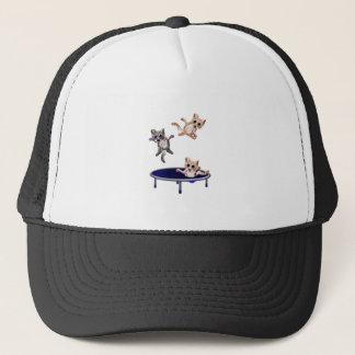 trampolining pussys trucker hat