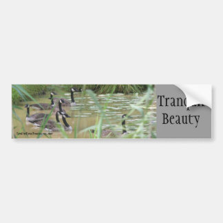 Tranquil Beauty Inspirational Bumper Sticker