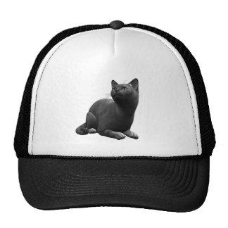Tranquil Black Cat Hat