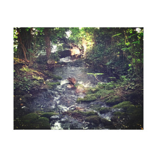 Tranquil Stream - Relaxing View Canvas Print