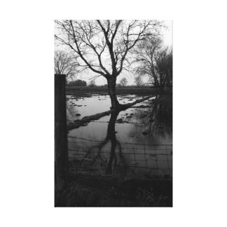 Tranquility in Black and White Canvas Print