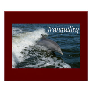 Tranquility Posters