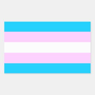Trans pride flag stickers