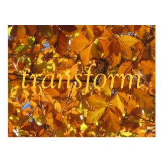 Transform Postcard