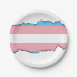 Transgender Pride Flag 7 Inch Paper Plate