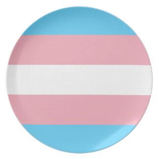 Transgender Pride Flag - LGBT Trans Rainbow Plate