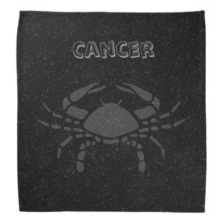 Translucent Cancer Bandana