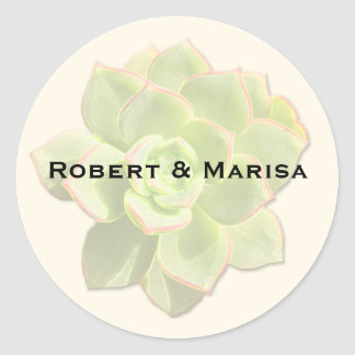 Translucent Succulent Gift Favour Stickers