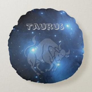 Transparent Taurus Round Cushion
