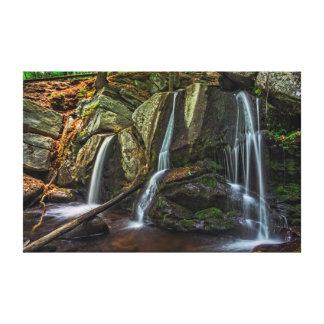 Trap Falls 1 Canvas Print
