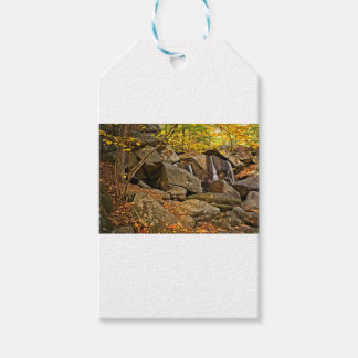 Trap Falls in Autumn Gift Tags