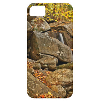 Trap Falls in Autumn iPhone 5 Cover