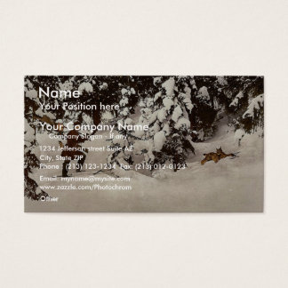 Trapping lynx, Russia classic Photochrom Business Card